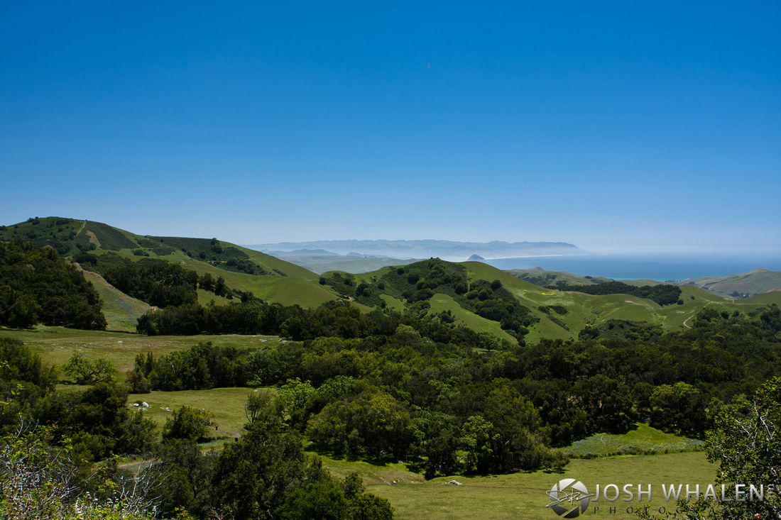 Image ID# Whalen-100507-1934 | Rolling Hills At Morro Bay