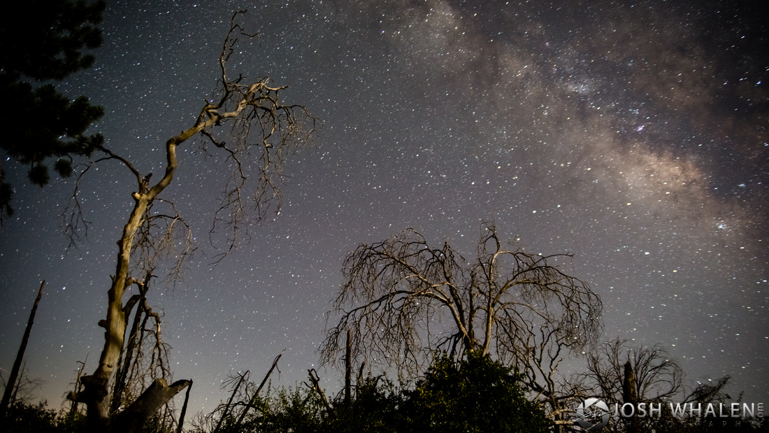 The Milky Way Galaxy is visible in the sky over Rancho Cuyamaca State Park near Julian, CA.