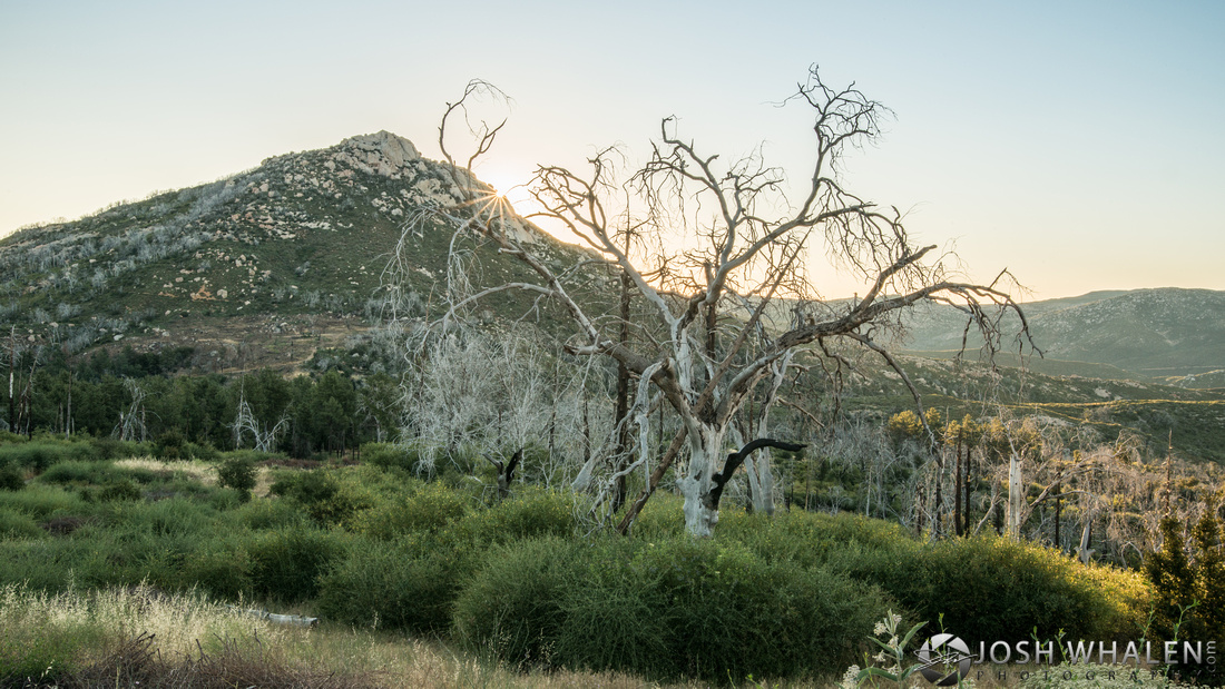 The sun rises over Stonewall Peak at Rancho Cuyamaca State Park near Julian, CA.